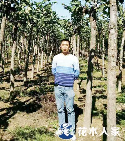郭会乐,博野县佳鑫盛世园林公司