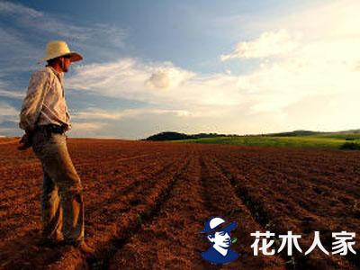 苗农必须有市场眼光,要种植适销对路的苗木。